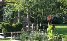 Rendez-vous aux Jardins | 3 et 4 Juin