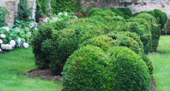 ANNULATION 7 juin Rendez-vous aux jardins